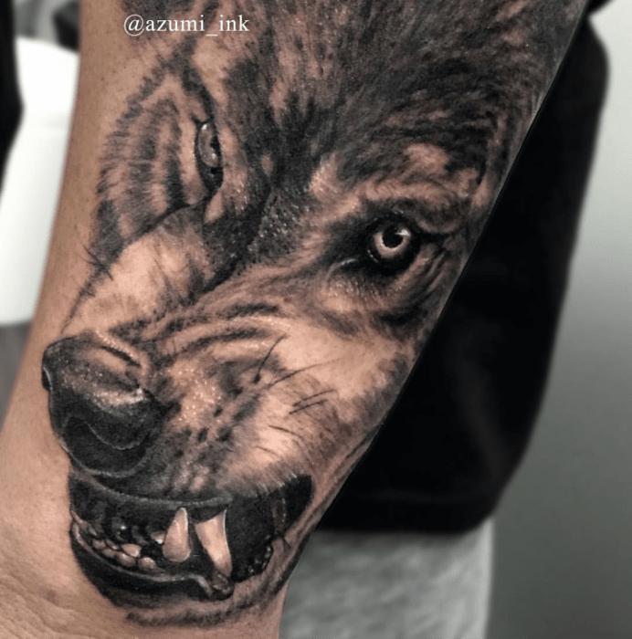 Lobo dientes