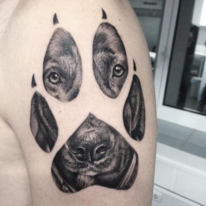 Palma perro