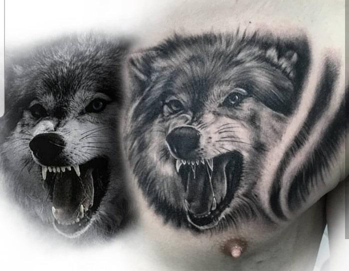 Lobo colmillos
